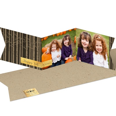 Autumn Greeting Halloween Photo Cards