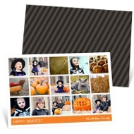 Halloween Moments Halloween Photo Cards