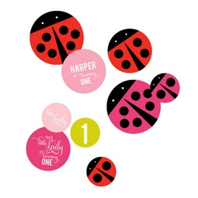 Little Ladybug Table Decor -- Kids Party Decorations