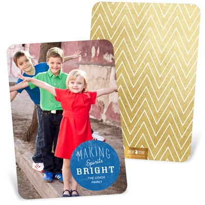 Spot Color Vertical Holiday Photo Cards