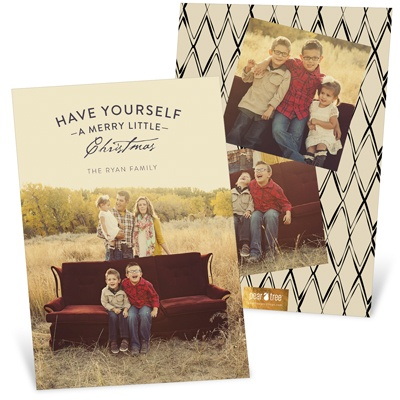 Mixed Font Greeting Vertical Holiday Photo Cards