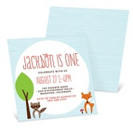 Furry Friends -- Kids Birthday Invitations