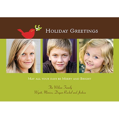 Tiny Dove -- Holiday Photo Cards