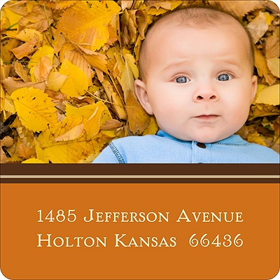 Solid Stripes Photo Address Label