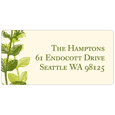 Elegant -- Green Address Label