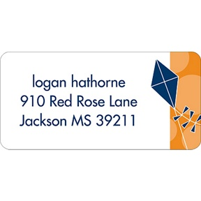 Time to Soar -- Blue Address Label