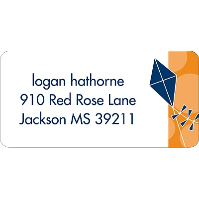 Time to Soar Blue Address Label