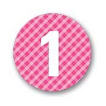 Round Gingham -- Kids Birthday Favor Stickers