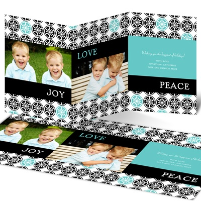 Stylish Snowflake Delight -- Holiday Photo Cards