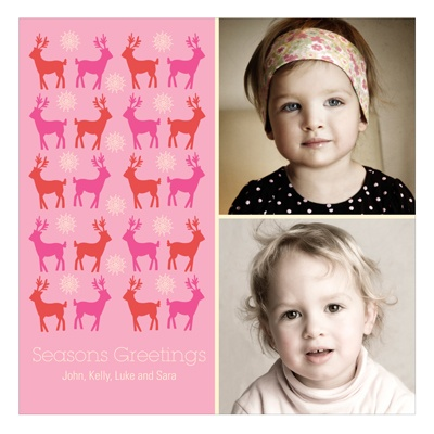 Gathering Deer In Pink -- Holiday Photo Cards