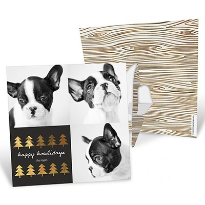 Gold Foil Pet Tri-Photo Frame Photo Christmas Cards