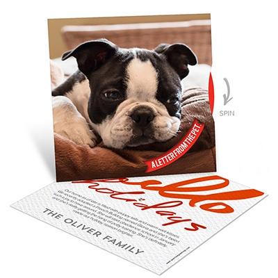 Doggy Spinner Photo Christmas Cards