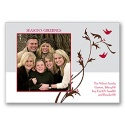 Birds and Berries Photo Panel Card