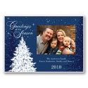 Holiday Sparkles Photo Panel Card