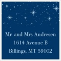 Holiday Sparkles Address Label Sheet