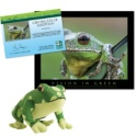 Adopt a Barking Tree Frog