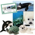 Marine Wildlife Series 1 Collection