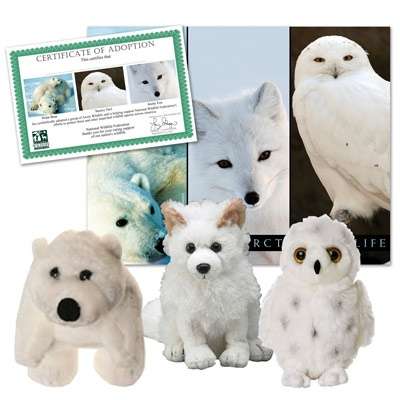 Arctic Wildlife Collection