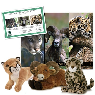 Endangered Wildlife Collection