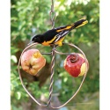 Johnny Apple Fruit Feeder