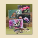 Colorful Beauties Sympathy Assortment Pack