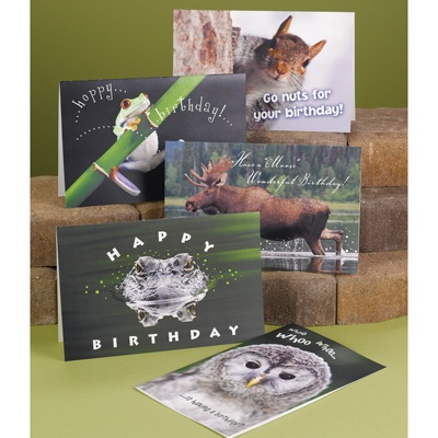 Naturally Funny Birthday Assortment Pack
