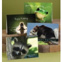 Lighthearted Wildlife Assortment Pack