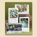 Winged Greetings Birthday Assortment Pack