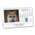 North American Wildlife 2013 Desk Calendar