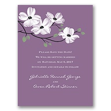 Dogwood Blossoms - Wisteria - Save the Date