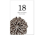 Burst of Color - Chocolate - Table Number