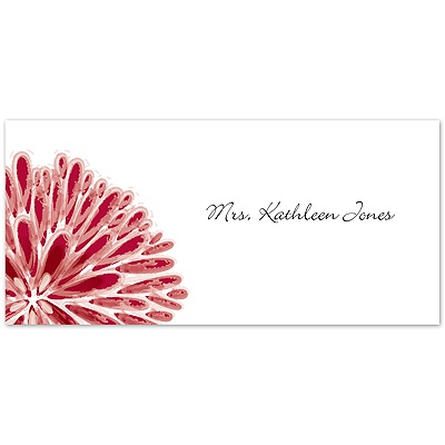 Burst of Color - Apple - Place Card