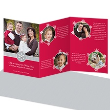 Snowy Frames Storyline Photo Holiday Card - Velvet