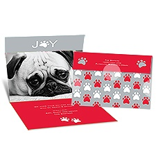 Paws for Joy Seal and Send Photo Holiday Card - Cherry