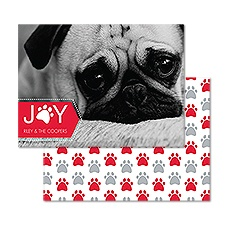 Paws for Joy Photo Holiday Card