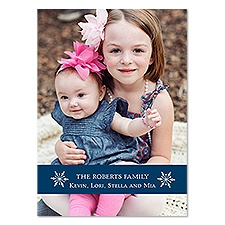 Simple Snowflakes Photo Holiday Card