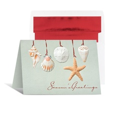 Seashells Holiday Card