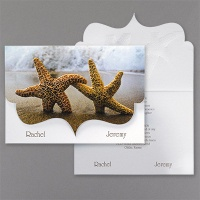starfish at beach
