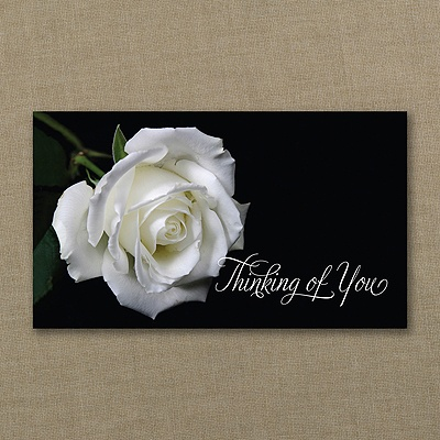 Thinking of You Rose > Sympathy Cards | Carlson Craft ...