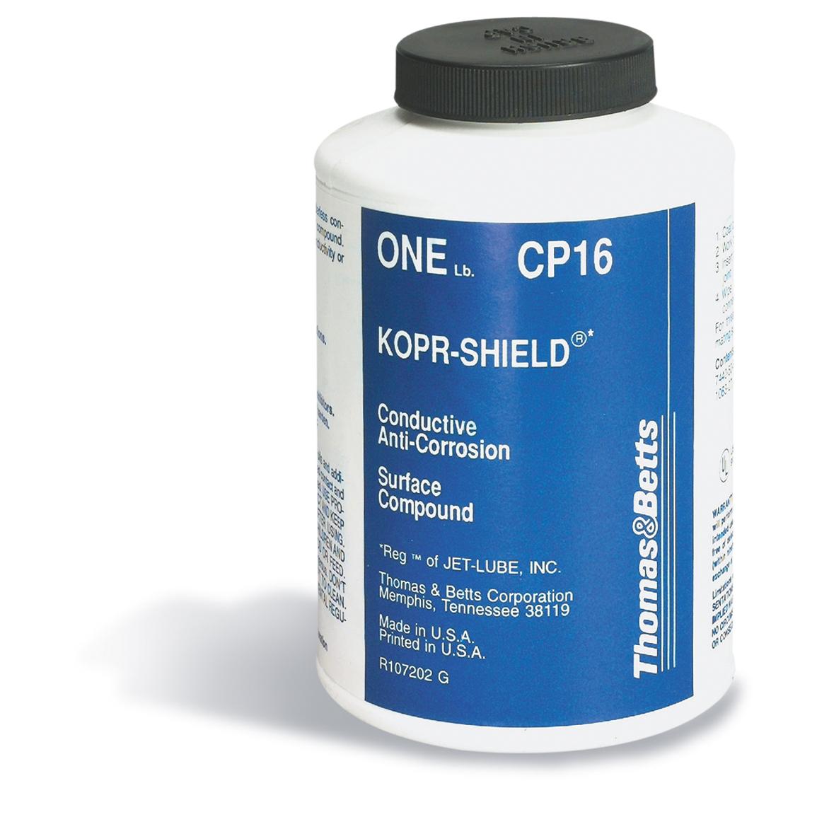 T&B CP16 1-PT CORROSION INHIBITOR