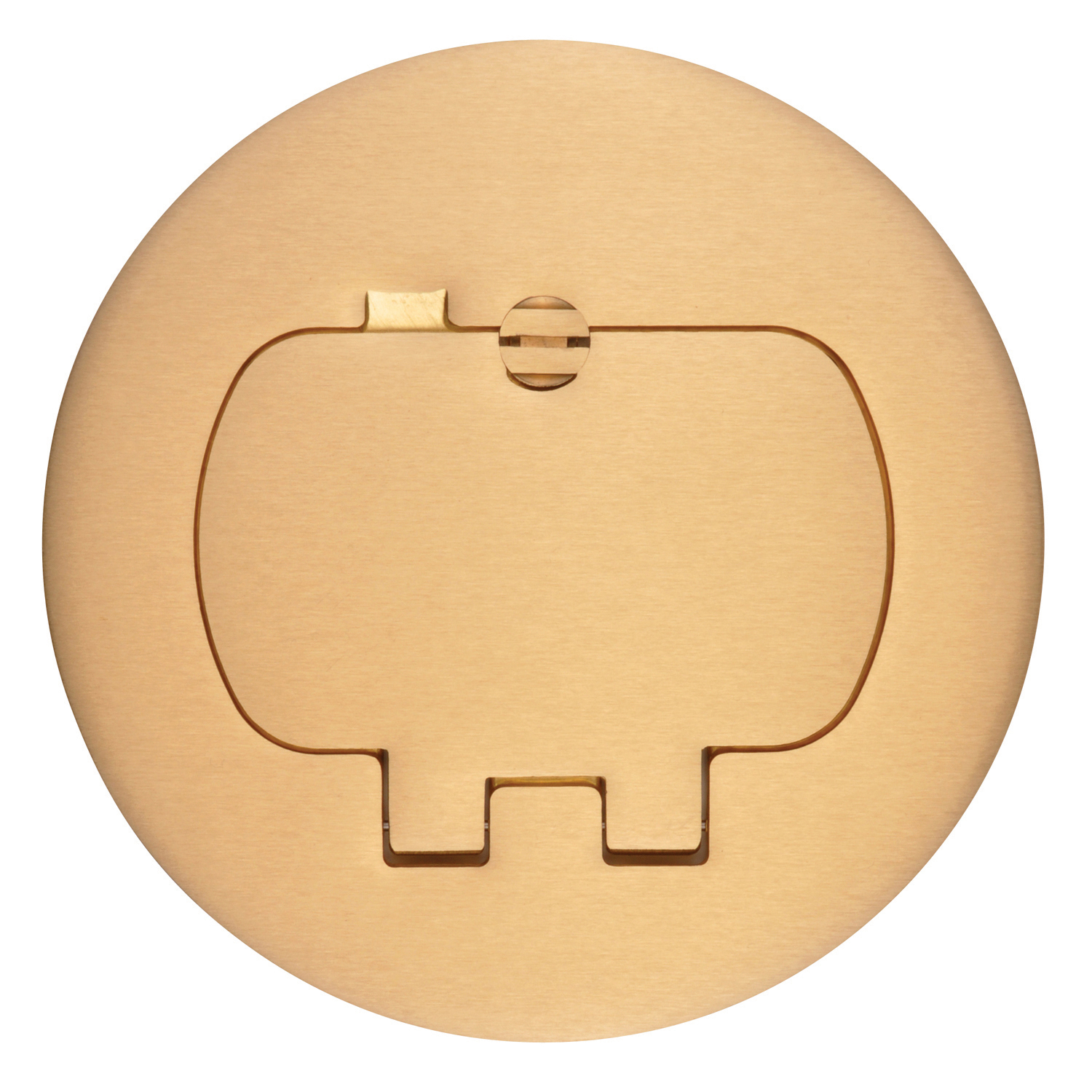 CARLON E97BR2 TWO DOOR BRASS DUPLEX COVER