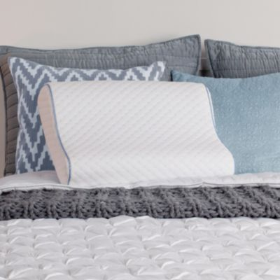 Sealy Memory Foam Contour Pillow by fort Revolution