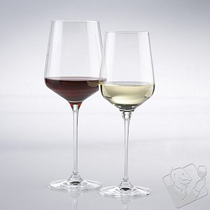 Fusion Infinity Red & White Wine Glass Collection (Set of 8)