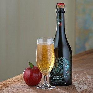 Craft Cider Glasses (Set of 6)