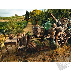 All Weather Outdoor Tuscan Print (30 X 40)