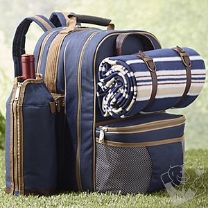 Wine Picnic Backpack Set for Four (Blue)
