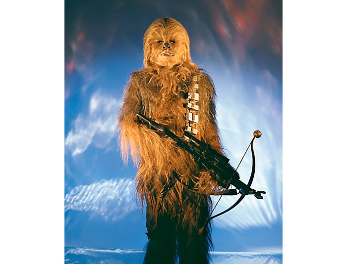 Chewbacca 18x22 Framed Photo, , large