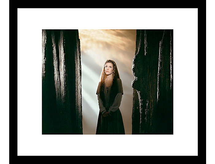 Princess 18x22 Framed Photo, , large