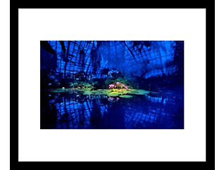 Lotus 28x32 Framed Photo, , large