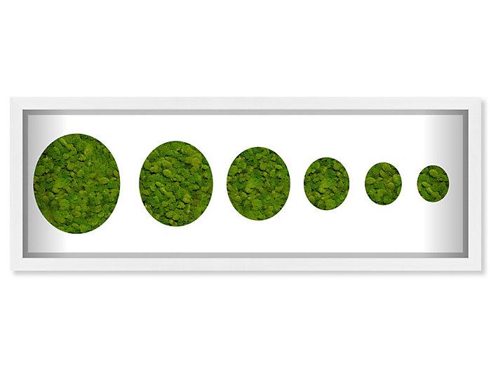 12x32 Moss Circles, , large